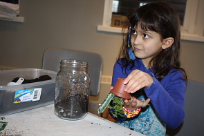 Jazmine Mazidi builds a terrarium during opening day. Photo by Richard Amery