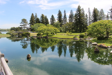 The Nikka Yuko Japanese Garden is open for the season. Photo by Richard Amery